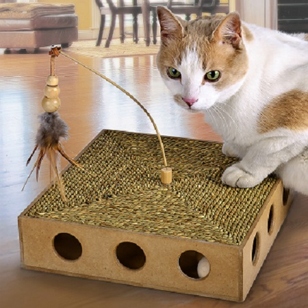 CatWare Seagrass Scratch N' Play