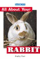 All About Your Rabbit