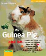 My Guinea Pig and Me - Click Image to Close