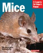 Mice A Complete Pet Owner's Manual