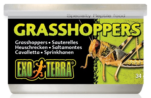 Exo Terra Canned Grasshoppers