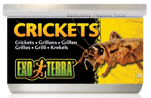 Exo Terra Canned Crickets 1.2 oz