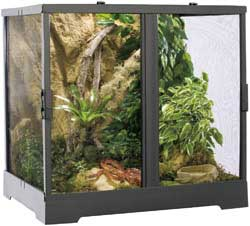 The Exo Terra Screen Terrarium