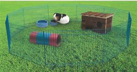 Living World Critter Playtime Pen