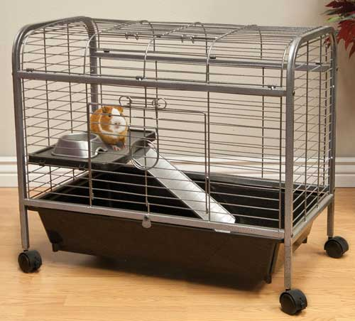 Living Room Guinea Pig Home by Ware Mfg.
