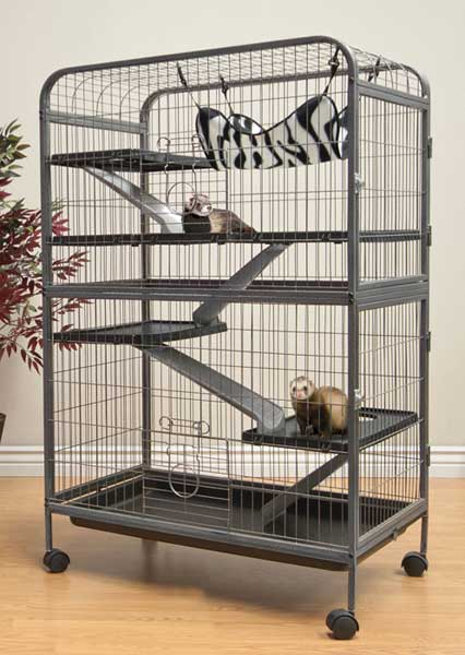 Living Room Ferret Home by Ware Mfg.