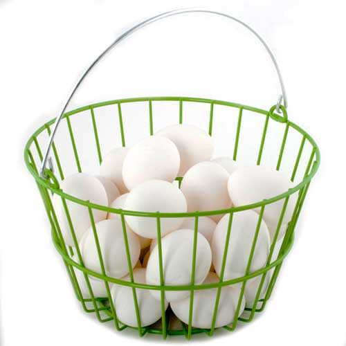 ChickenWare Egg Basket
